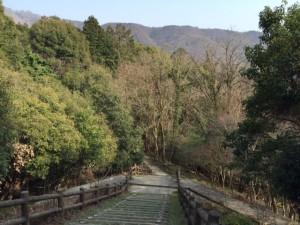 散策路−伏尾台側