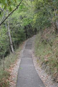 散策路−久安寺側