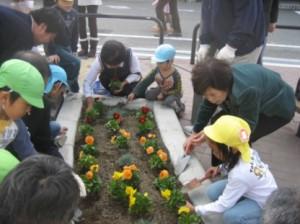 花壇花植え付作業