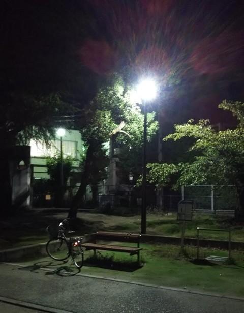 夜 新しい街路灯(トイレの横)